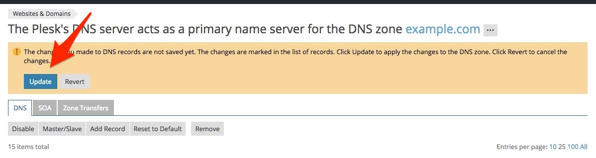 How To Add a Custom DNS Record in Plesk Control Panel